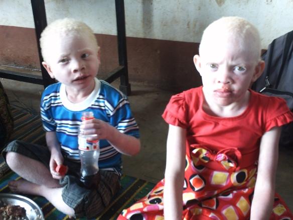 die kleinsten Albinos.JPG